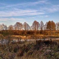 Поникли высокие травы :: Лара Симонова