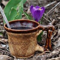 Весенний кофе-брейк... :: Александр Резуненко
