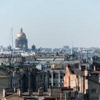 Питерские крыши :: VL