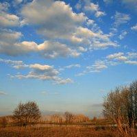 Ах, неба синь так высока, что кажется волшебно-сказочным фонтаном... :: Евгений Юрков