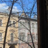 Дом В. В. Набокова на Б. Морской :: Маера Урусова