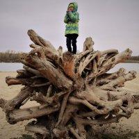 Ассоль замерзла... :: Лариса Красноперова