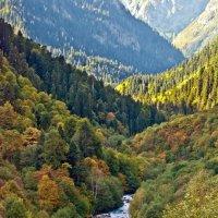 Долина реки Малая Лаба :: Денис Масленников