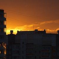 Отблески заката :: Ольга Логинова