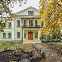 Топловский монастырь :: Владимир Колесников
