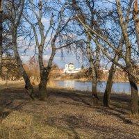 весенний пейзаж :: Валентина Домашкина