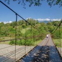 Автомобильно-пешеходный мост :: Светлана Винокурова