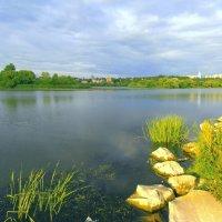 Река Свияга. :: Людмила И.
