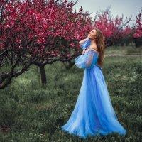 В персиковом Раю, под дождем и практически ночью... :: Алексей Латыш