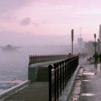 Сиреневый туман. :: Тамара Бучарская