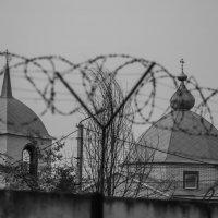 Золотые купола душу мою радуют... :: Руслан Васьков