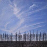 Апрельское небо. :: Венера Чуйкова