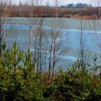 полуоттаявшее озеро :: Александр Прокудин