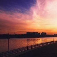 ...парк 850-летия Москвы /2019 :: Pasha Zhidkov
