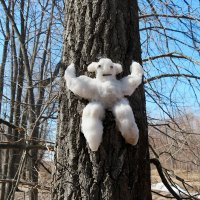 И уползают от весны последние снеговики...:-) :: Андрей Заломленков