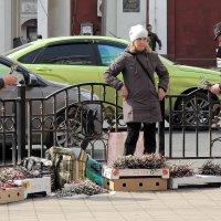 В Ярославле в субботу, на Первомайской, к вербному воскресенью готовы :: Николай Белавин
