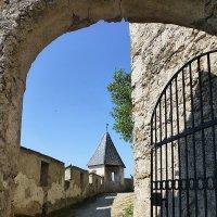 Стены и башня замка Хохостервиц :: Лидия Бусурина
