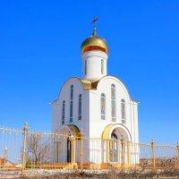 Хорошего всем Вербного воскресенья! :: Андрей Заломленков