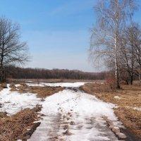 По следам уходящего апреля.. :: Андрей Заломленков