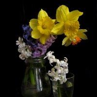 Композиция с весенними цветами. :: Nata