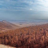 Осеннние просторы :: Андрей Семенов