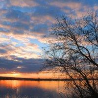 В апреле на реке :: владимир тимошенко