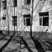 Танец теней :: Сергей Шаврин