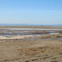 Финский залив. Апрель :: Маера Урусова