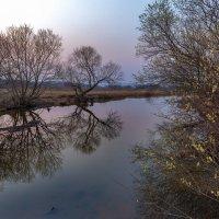 Вечерком на Приморской речушке ... :: Евгений Хвальчев