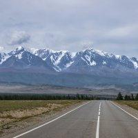 Дороги Горного Алтая :: Виктор Четошников