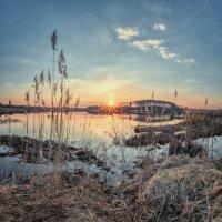 Вечер на Дичковском озере :: Николай Андреев