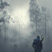 На пути свирепые волки :: Ринат Абдуллин
