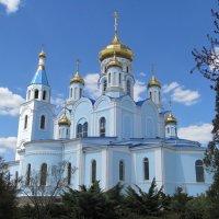 Собор Покрова Пресвятой Богородицы. :: Нина Акарцева