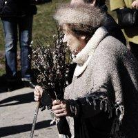 ВЕРБНОЕ /11/ :: Виктор Никитенко