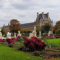 Прогулки по Парижу: Сад Тюильри :: Елена Даньшина