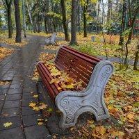 Осенний Зеленогард :: aleks50
