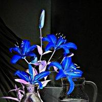 Люблю я синие цветы. :: ЛЮБОВЬ ВИТТ