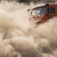 В облаке пыли. :: Марина Никулина