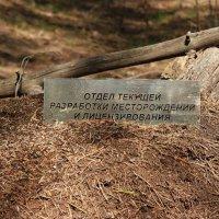 К вопросу о месторождениях...:-) :: Андрей Заломленков