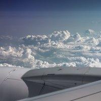 Кто куда, а мы в полёт) :: Светлана Карнаух