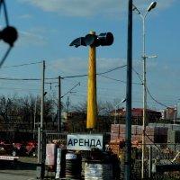 кому молоток в аренду... :: Геннадий Титов