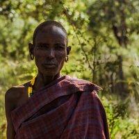 Женщина масаи :: svabboy photo