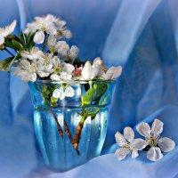 На память о весне... :: ЛЮБОВЬ ВИТТ