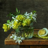 первоцветы... :: шмакова тамара