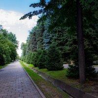 Парк 28 гвардейцев-панфиловцев 2 :: Светлана SvetNika17