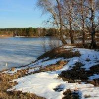 Весна на реке Таволга :: Нэля Лысенко