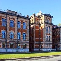 Здание института мозга человека им. Н.П.Бехтеревой, С-Пб :: Евгений