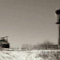 Дом (зима) :: Елена Минина
