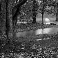 В осеннем парке листопад :: Борис Леваков
