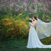 майская свадьба :: Ольга Егорова